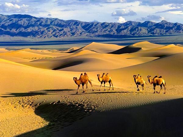 gobi-desert-mongolia_12249_600x450